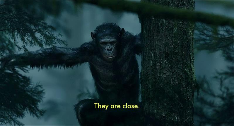 DVDFab Forum - No forced subtitles in Dawn of the Planet of the Apes